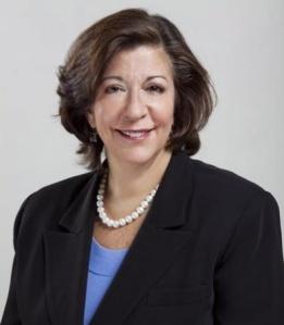 State Rep. Sara Feigenholtz